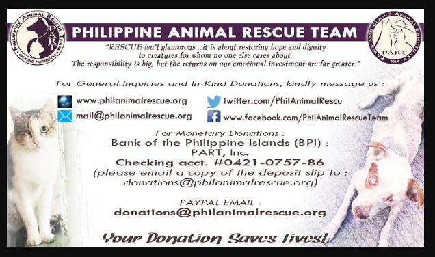 philippine animal rescue team